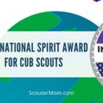 Penghargaan Semangat Internasional untuk Cub Scouts