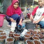 Pramuka Kota Semarang Berkebun