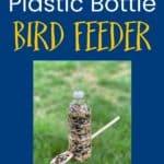 Cara Membuat Pengumpan Burung Botol Plastik