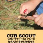 Whittling Chip Requirements 150x150.jpg