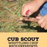 Apa Persyaratan Cub Scout Whittling Chip?