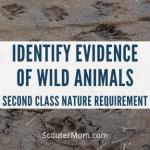 Persyaratan Alam Kelas Dua: Identifikasi Bukti Hewan Liar