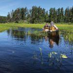 Pramuka Menavigasi Jalur Utara yang Sama yang Meluncurkan Tradisi Kano Kepanduan