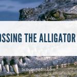 Menyeberangi Game Alligator Pit