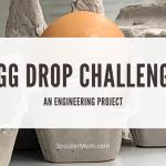 Egg Drop Challenge - Proyek Teknik
