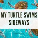 Kura-kura Saya Berenang ke Samping