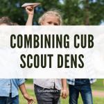 Menggabungkan Cub Scout Dens: Beruang dan Serigala
